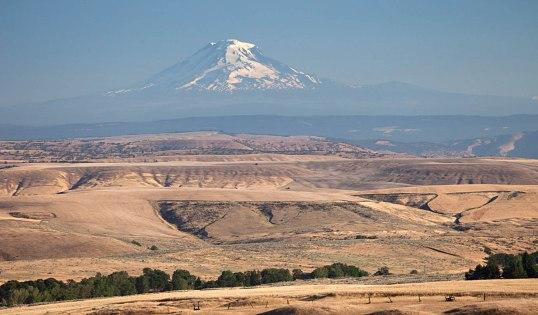 "Lava flows of the CRBG in northern Oregon and Mt. Adams of southern Washington.  With views like this, how can you say the CRBG is boring? (Location ""F"" on map below.)"