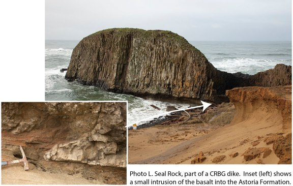 L. Seal Rock