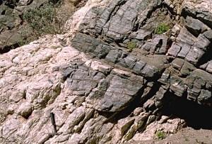 pegmatite dike and sill intruding mylonitic gneiss