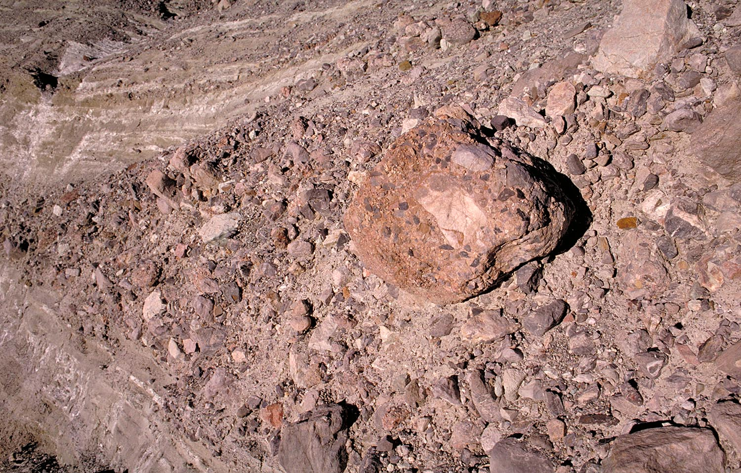 Conglomerate clast in conglomerate