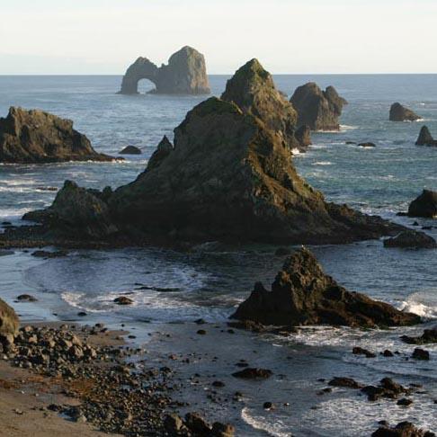 Sea stacks and sea arch, southern Oregon