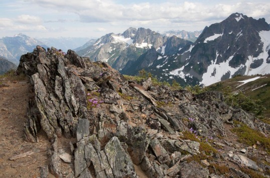 Orthogneiss, North Cascades, Washington (6857).