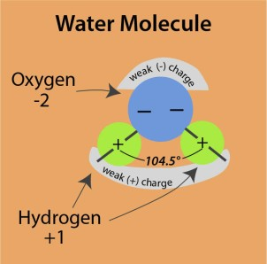water molecule2
