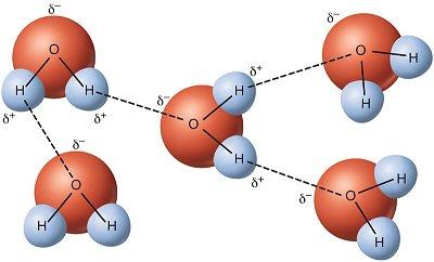 wss-propety-water-molecule-bonding