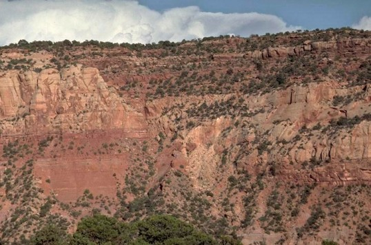 Normal fault placing thick-bedded Wingate Sandstone (left) against thin-bedded Kayenta Formation (right)